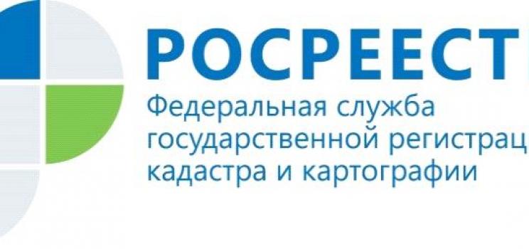 Новые услуги Кадастровой палаты для красноярцев