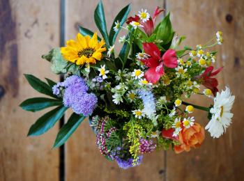 Боготольские флористы