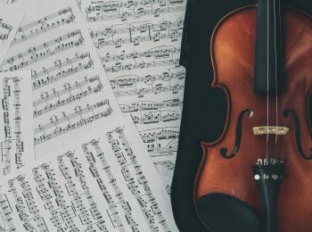 В жизни – разные, в оркестре — игривые!
